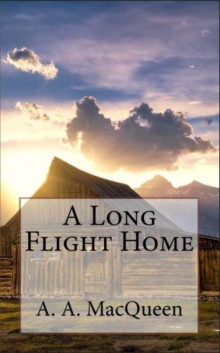 A long flight home thumbnail